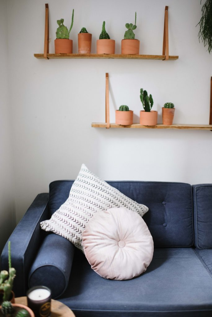 Peach color round velvet cushion on dark blue sofa. Wall behind has small plant holder with indoor plants.