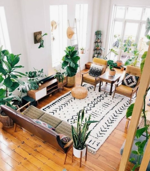 Plants in Boho home