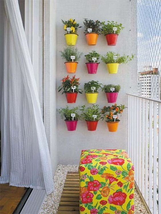 Colorful plants on the balcony wall