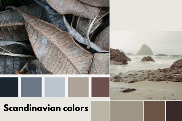 Color palette which represents Scandinavian colors